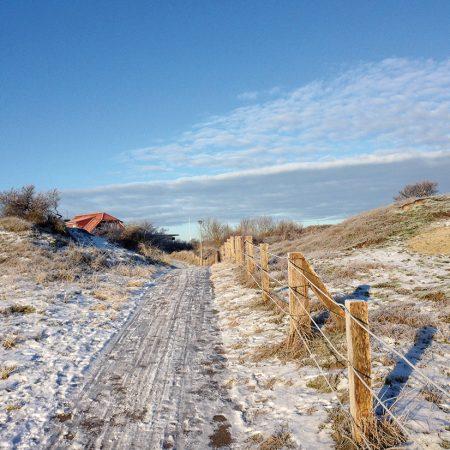 winter-beate2